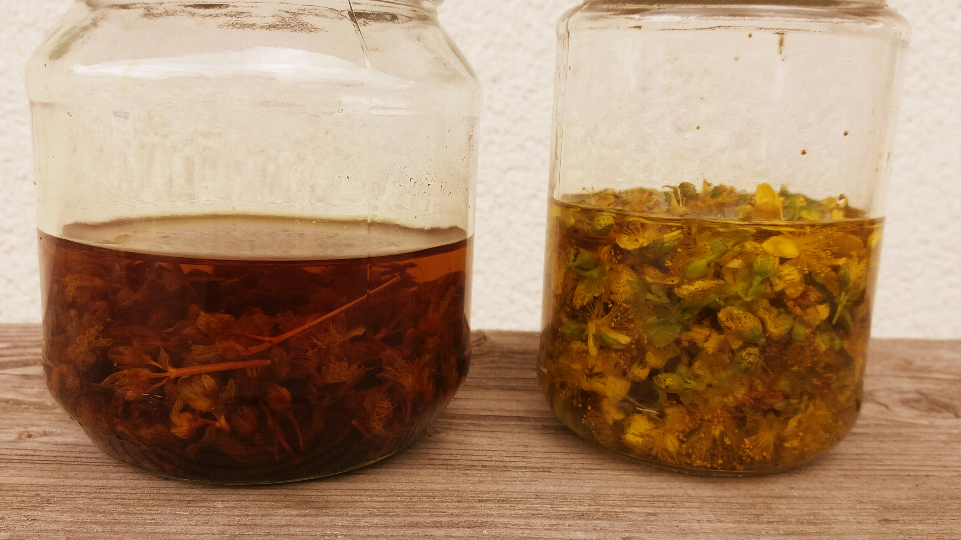 Johanniskrautöl 1 Woche alt - und frisch.